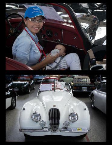 Karina 1981 Jaguar 1951
