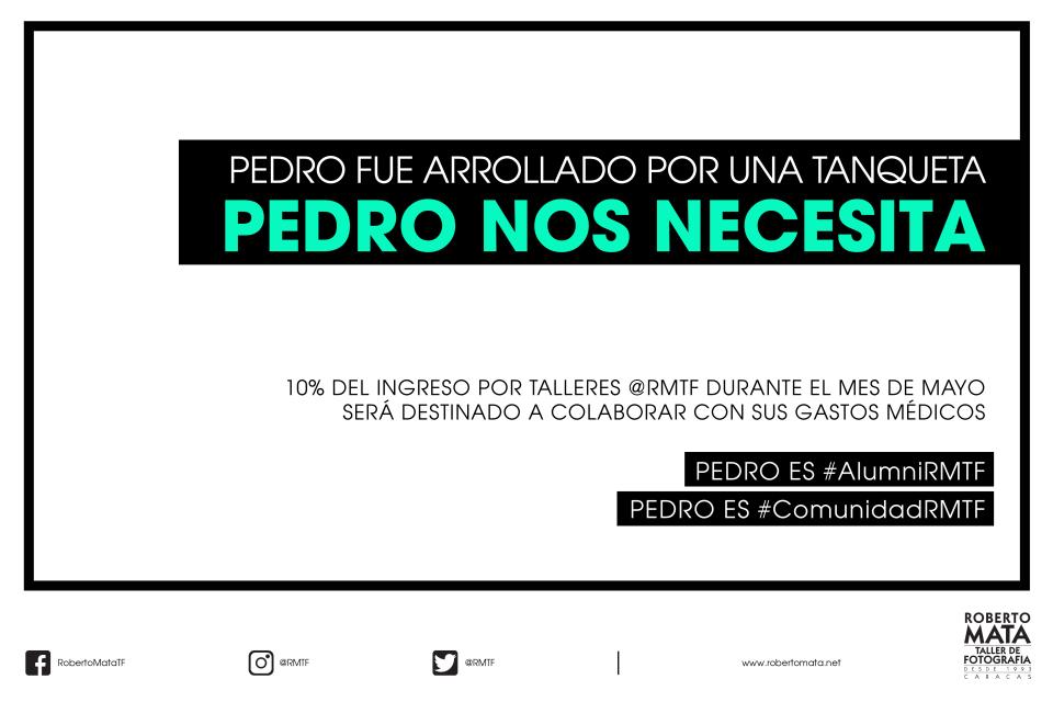 PEDRO-WEB-01