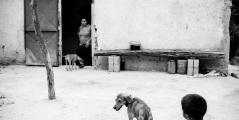 claudiabertou-chuao-documentalismo-9159